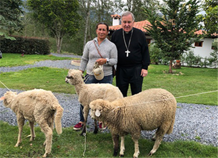 Messengers of Peace in Colombia continue to grow — in men and sheep