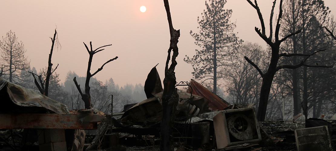 Catholic services move to help wildfire victims