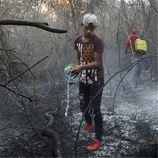 Wildfires point to urgency of upcoming Amazon synod