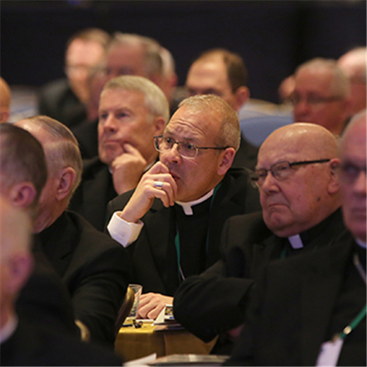 USCCB assembly to review third-party reporting system, elect new officers