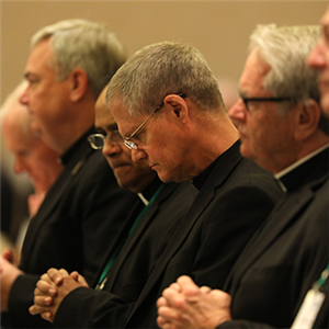 At assembly, U.S. bishops discuss bishop reporting system, examine challenges faced by Church, society