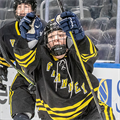 Vianney, Duchesne celebrate wins in hockey finals