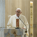 POPE'S MESSAGE | A life faithful to the Gospel often draws persecution