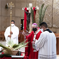 Abp. Gomez: 'Holy Week makes us witnesses of our Lord's love for us'