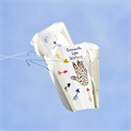 High on Life kite festival draws kites in the air and attention to pro-life message