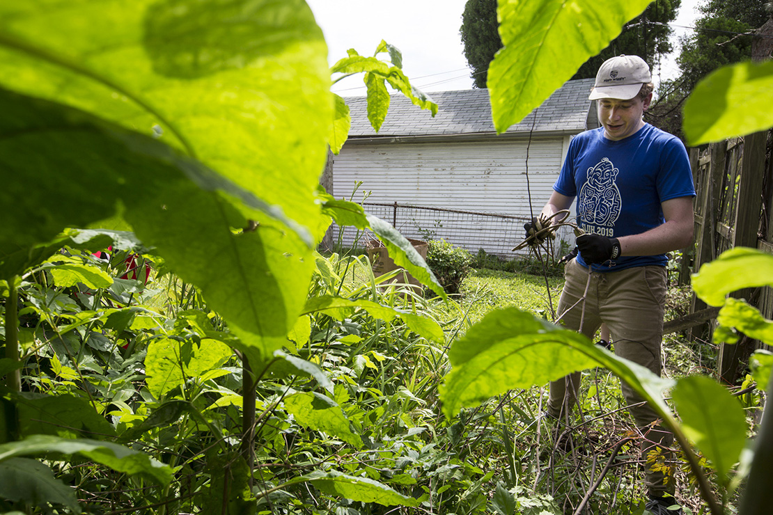 Saint Louis University High School student Kyle Hannan cut weeds June 6 at a home in the Baden neighborhood of St. Louis. Hannan participated in Project Life, a service retreat of the Office of Youth Ministry.