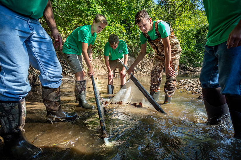 From left, Mark Clampitt, Tyler Von Bokel, Brennan Rottger and Cole Schoolfield lowered a net into the water to catch macroinvertebrates with the St. Paul Stream Team, in conjunction with the Missouri Department of Conservation, in Peruque Creek in St. Paul Sept. 27.