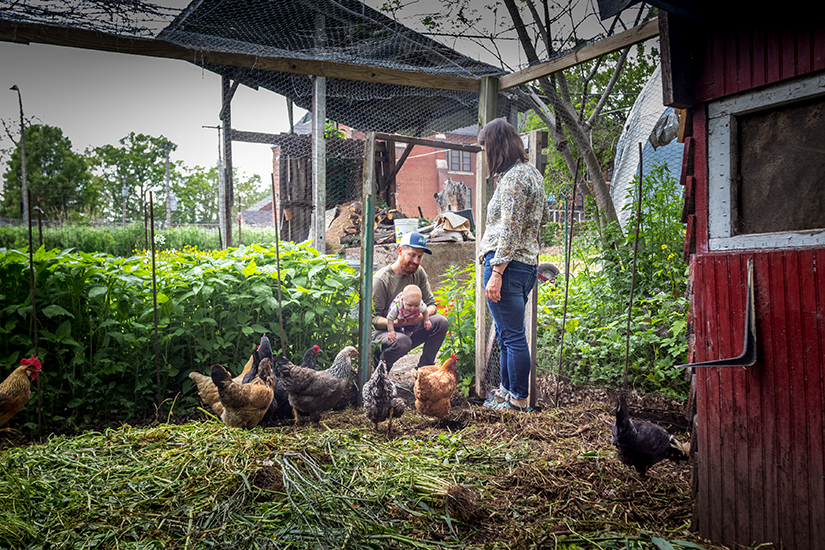 Husband and wife urban farmers, Mary Densmore and James Meinert and their daughter Autumn, visited the chickens on their farm, Bee Simple City Farm.