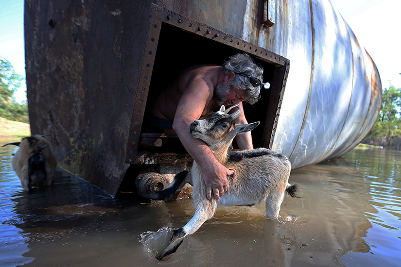 A farmer in Iowa, La., rescued his goat from a damaged silo Oct. 10, after Hurricane Delta swept through the area.