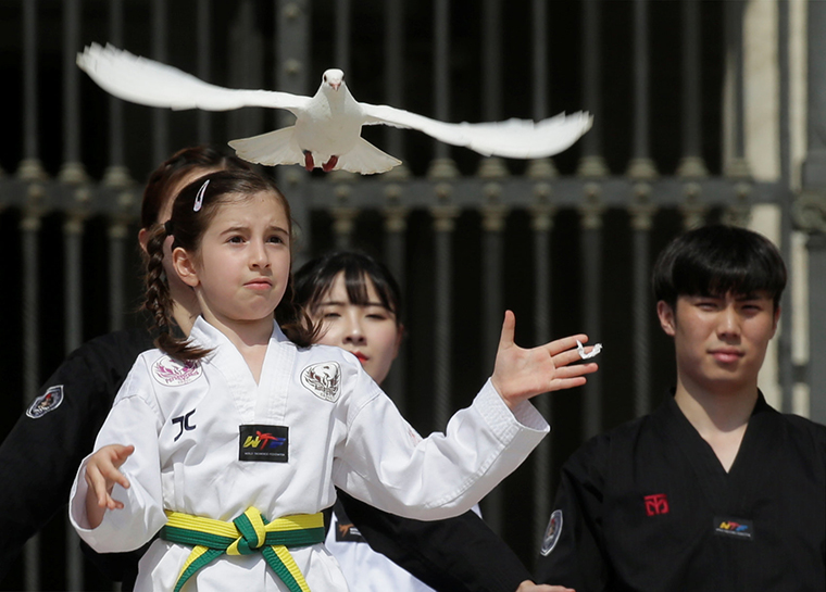A Taekwondo athlete from Korea released a dove after performing for Pope Francis during his general audience May 30 in St. Peter's Square at the Vatican.